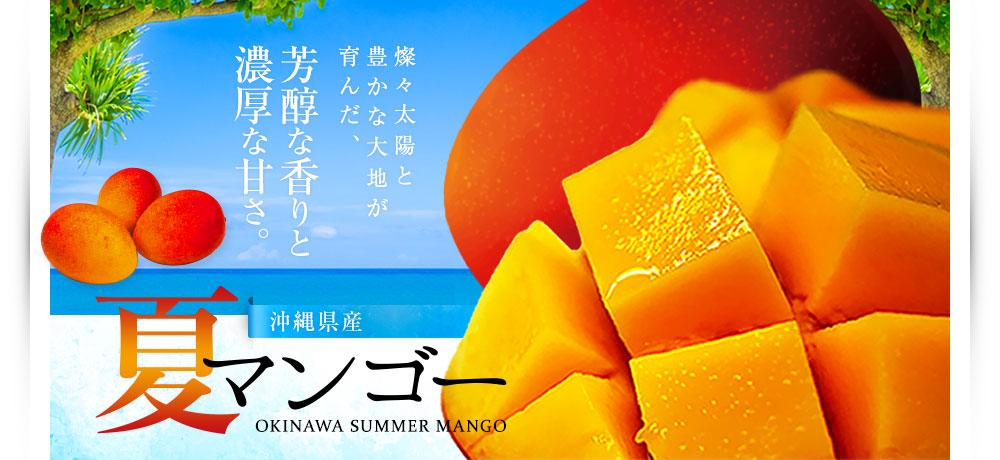 沖縄マンゴー-2021年度沖縄県産マンゴー通販|沖縄いただきます